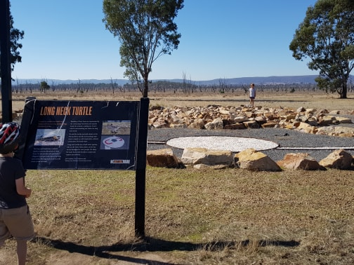 The giant long neck turtle art installation at Winton Wetlands